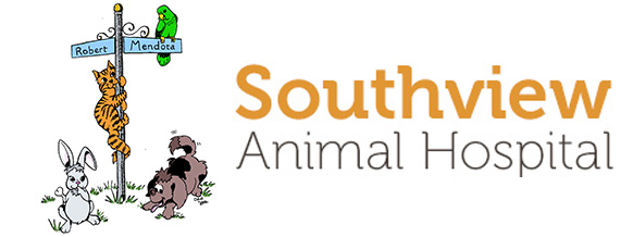 veterinarians in Inver Grove Heights | Southview Animal Hospital
